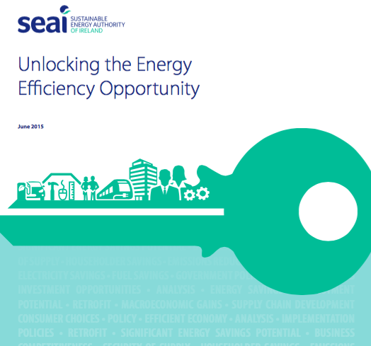 SEAI Energy Efficiency Report on Irish Policy Options